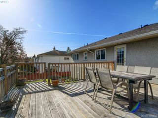 Photo 22: 4145 Birtles Ave in VICTORIA: SW Glanford Single Family Detached for sale (Saanich West)  : MLS®# 835004