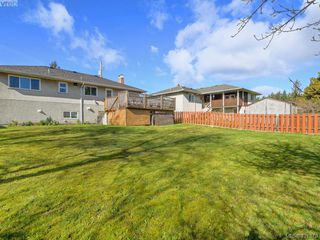 Photo 24: 4145 Birtles Ave in VICTORIA: SW Glanford Single Family Detached for sale (Saanich West)  : MLS®# 835004