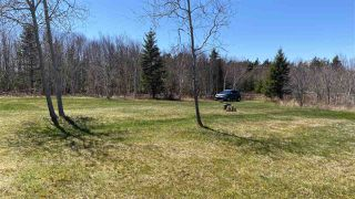 Photo 11: 1020 BIG ISLAND Road in Big Island: 108-Rural Pictou County Vacant Land for sale (Northern Region)  : MLS®# 202008348