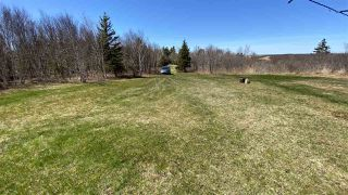 Photo 8: 1020 BIG ISLAND Road in Big Island: 108-Rural Pictou County Vacant Land for sale (Northern Region)  : MLS®# 202008348