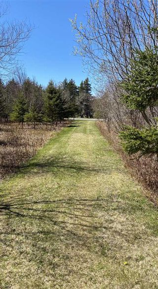 Photo 3: 1020 BIG ISLAND Road in Big Island: 108-Rural Pictou County Vacant Land for sale (Northern Region)  : MLS®# 202008348