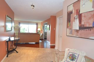 Photo 7: 311 14810 51 Avenue in Edmonton: Zone 14 Condo for sale : MLS®# E4206353