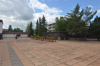 Photo 32: 311 14810 51 Avenue in Edmonton: Zone 14 Condo for sale : MLS®# E4206353