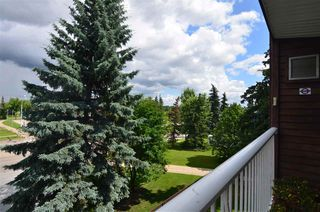 Photo 27: 311 14810 51 Avenue in Edmonton: Zone 14 Condo for sale : MLS®# E4206353