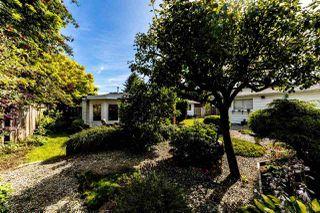 Photo 34: 13735 BLACKBURN Avenue: White Rock House for sale (South Surrey White Rock)  : MLS®# R2477840