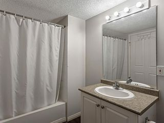 Photo 5: 3106 6818 Pinecliff Grove NE in Calgary: Pineridge Apartment for sale : MLS®# A1053004