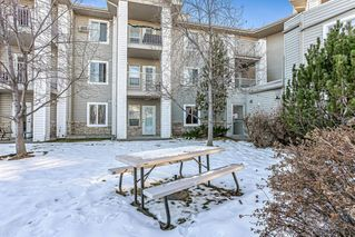 Photo 20: 3106 6818 Pinecliff Grove NE in Calgary: Pineridge Apartment for sale : MLS®# A1053004
