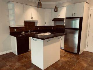 Photo 5: 206 10116 80 Avenue in Edmonton: Zone 17 Condo for sale : MLS®# E4225024