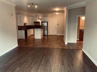 Photo 9: 206 10116 80 Avenue in Edmonton: Zone 17 Condo for sale : MLS®# E4225024