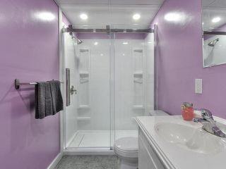 Photo 8: 6 NORFOLK Close: St. Albert House for sale : MLS®# E4205114