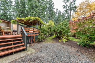 Photo 16: 2939 York Rd in : CR Campbell River South House for sale (Campbell River)  : MLS®# 859215