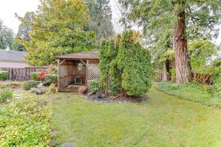 """Photo 31: 987 WALALEE Drive in Delta: English Bluff House for sale in """"THE VILLAGE"""" (Tsawwassen)  : MLS®# R2516827"""