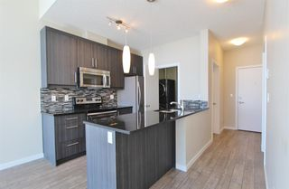 Photo 17: 416 402 MARQUIS Lane SE in Calgary: Mahogany Apartment for sale : MLS®# A1056847