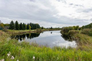 Photo 30: 16 PEARL Crescent: Rural Sturgeon County House for sale : MLS®# E4174065