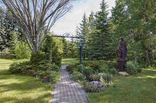 Photo 43: 20204 5 Avenue in Edmonton: Zone 57 House for sale : MLS®# E4174448