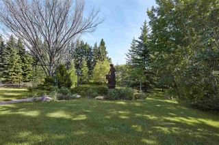 Photo 4: 20204 5 Avenue in Edmonton: Zone 57 House for sale : MLS®# E4174448