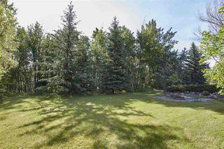 Photo 45: 20204 5 Avenue in Edmonton: Zone 57 House for sale : MLS®# E4174448