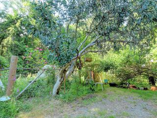 Photo 7: 1686 Whiffin Spit Rd in SOOKE: Sk Whiffin Spit Single Family Detached for sale (Sooke)  : MLS®# 820160