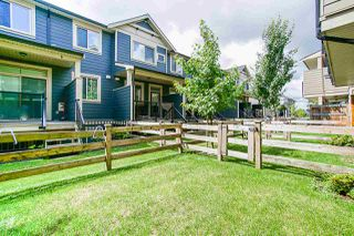"""Photo 16: 40 19913 70 Avenue in Langley: Willoughby Heights Townhouse for sale in """"Brooks"""" : MLS®# R2421609"""