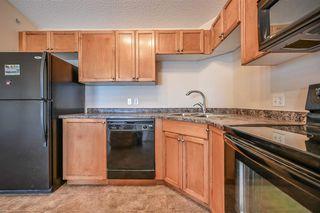 Photo 11: 1413 7339 SOUTH TERWILLEGAR Drive in Edmonton: Zone 14 Condo for sale : MLS®# E4191166
