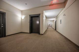Photo 21: 1413 7339 SOUTH TERWILLEGAR Drive in Edmonton: Zone 14 Condo for sale : MLS®# E4191166
