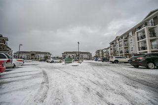 Photo 22: 1413 7339 SOUTH TERWILLEGAR Drive in Edmonton: Zone 14 Condo for sale : MLS®# E4191166