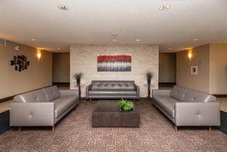 Photo 24: 208 7909 71 Street in Edmonton: Zone 17 Condo for sale : MLS®# E4191605