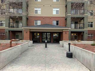 Photo 39: 208 7909 71 Street in Edmonton: Zone 17 Condo for sale : MLS®# E4191605