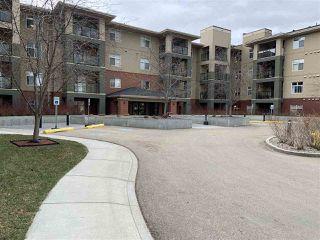 Photo 38: 208 7909 71 Street in Edmonton: Zone 17 Condo for sale : MLS®# E4191605