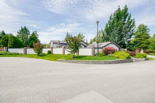 "Photo 39: 15362 KILDARE Drive in Surrey: Sullivan Station House for sale in ""Sullivan Station"" : MLS®# R2473443"