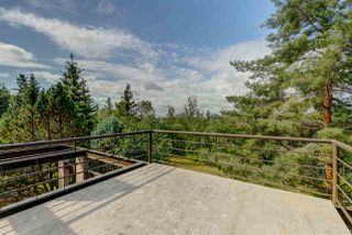 Photo 39: 5010 154 Street in Edmonton: Zone 14 House for sale : MLS®# E4184024