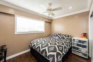 Photo 13: 2121 LAURIER Avenue in Port Coquitlam: Glenwood PQ House for sale : MLS®# R2480217