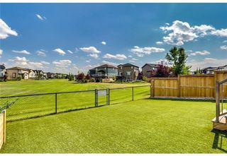 Photo 39: 2087 Luxstone Boulevard SW: Airdrie Detached for sale : MLS®# A1047404