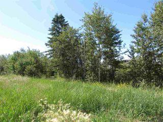 Photo 5: 24 Sun Meadows Close: Stony Plain Vacant Lot for sale : MLS®# E4175593