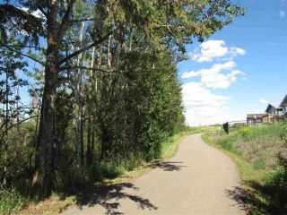 Photo 10: 24 Sun Meadows Close: Stony Plain Vacant Lot for sale : MLS®# E4175593
