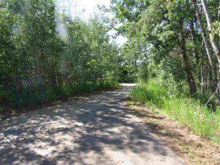 Photo 7: 24 Sun Meadows Close: Stony Plain Vacant Lot for sale : MLS®# E4175593