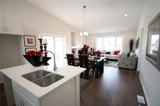 Photo 7: 48 Falcon Cove in St Adolphe: Tourond Creek Residential for sale (R07)  : MLS®# 202010755