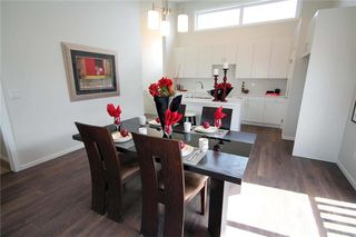 Photo 19: 48 Falcon Cove in St Adolphe: Tourond Creek Residential for sale (R07)  : MLS®# 202010755