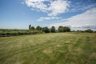 Photo 36: 4505 112 Street in Delta: Ladner Rural House for sale (Ladner)  : MLS®# R2481646