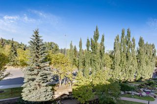 Photo 14: 430 5201 DALHOUSIE Drive NW in Calgary: Dalhousie Apartment for sale : MLS®# A1032387