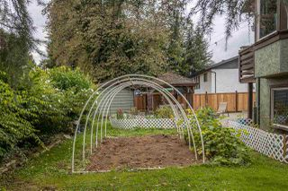 Photo 33: 32094 HOLIDAY Avenue in Mission: Mission BC House for sale : MLS®# R2507161