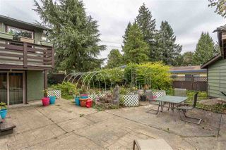 Photo 31: 32094 HOLIDAY Avenue in Mission: Mission BC House for sale : MLS®# R2507161
