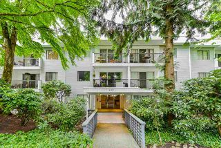 "Photo 1: 108 428 AGNES Street in New Westminster: Downtown NW Condo for sale in ""Shanley Manor"" : MLS®# R2473558"