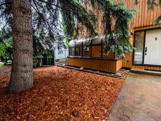 Photo 49: 5 GLACIER Place: St. Albert House for sale : MLS®# E4205600