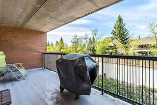 Photo 17: 209 5204 Dalton Drive NW in Calgary: Dalhousie Apartment for sale : MLS®# A1044699