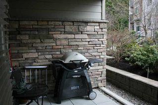 Photo 11: 101 15175 36 AVENUE in EDGEWATER: Morgan Creek Home for sale ()  : MLS®# R2244809