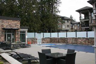 Photo 15: 101 15175 36 AVENUE in EDGEWATER: Morgan Creek Home for sale ()  : MLS®# R2244809