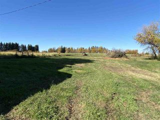 Photo 50: 59311 RR11: Rural Westlock County House for sale : MLS®# E4220627