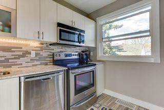 Photo 11: 11227 61 Street in Edmonton: Zone 09 House for sale : MLS®# E4170931