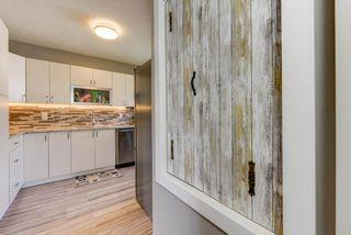 Photo 9: 11227 61 Street in Edmonton: Zone 09 House for sale : MLS®# E4170931